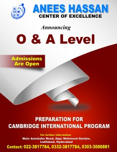 OA-Level-Brochure-final copy